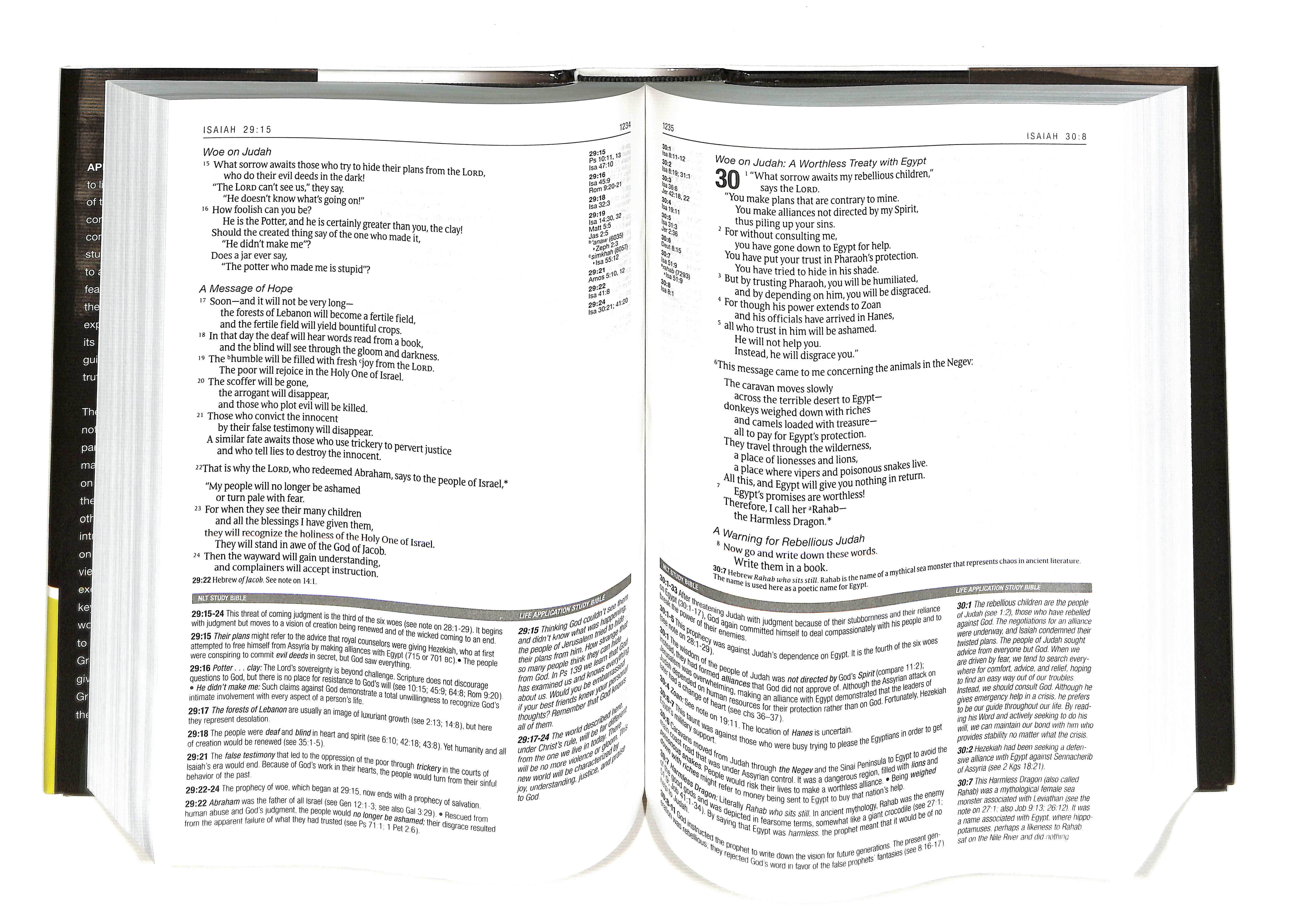 Nlt parallel study bible nutone